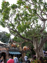 Adventureland can sometimes get to be a bit of a bottle neck, but it really is one of my favorite areas of the park. There's such a richness of detail in a such a small space.